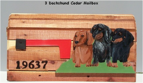 long haired dachshund black and tan. and tan dapple longhaired